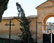 La caduta del cipresso al cimitero di Torrenieri a causa del vento