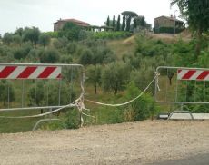 Una delle zone soggette al taglio di piante lungo la circonvallazione, segnalato da Maurizio Giannelli