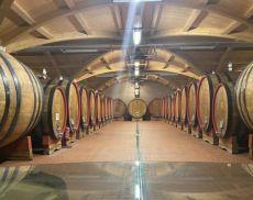 Cantina di Montalcino: la bottaia