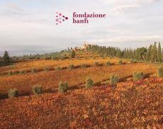 Fondazione Banfi, Summer School rinviata al 2021