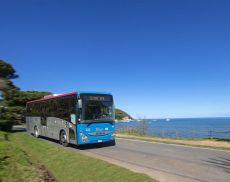Torna il bus per andare al mare nelle coste grossetane