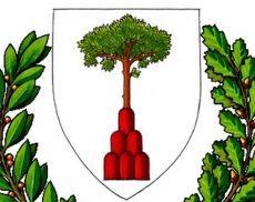 Logo del Comune di Montalcino