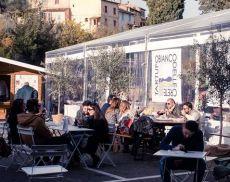 Dopo la Mostra Mercato del Tartufo Bianco, San Giovanni d'Asso è pronta ad accogliere la Festa del Tartufo Marzuolo