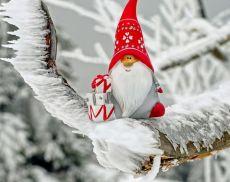 Il calendario completo degli eventi natalizi