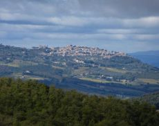 Montalcino ...