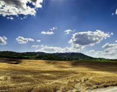 Un profilo di Montalcino nela luce dell'estate