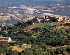 Panorama di Castelnuovo dell'Abate e Sant'Antimo