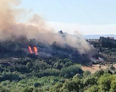 Le fiamme hanno trasformato la domenica di Montisi in una serata di paura. Per fortuna nessuna conseguenza alle persone.