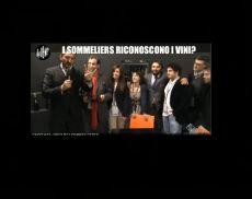 La Iena Casciari con il Team di Winenews