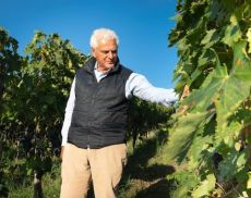L'imprenditore e viticoltore Pasquale Forte