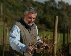 Maurizio Castelli, enologo e amministratore unico di Progetto Agricoltura