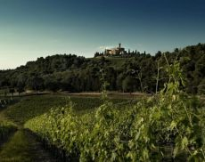 Una veduta di Castello Banfi, azienda leader del Brunello di Montalcino