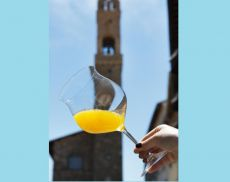 Il Miele, l'oro giallo di Montalcino