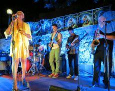 Camigliano Blues, un concerto di una passata edizione